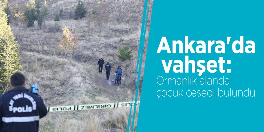 Ankara'da vahşet: Ormanlık alanda çocuk cesedi bulundu