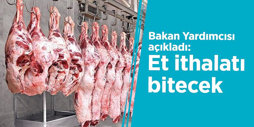Bakan Yardımcısı açıkladı: Et ithalatı bitecek