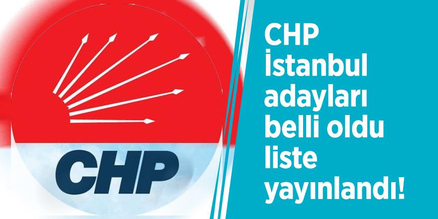 CHP İstanbul adayları belli oldu, liste yayınlandı! Büyükşehir adayı Şener