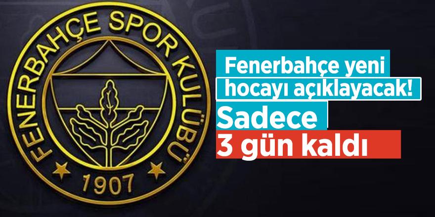 Fenerbahçe yeni hocayı açıklayacak! Sadece 3 gün kaldı