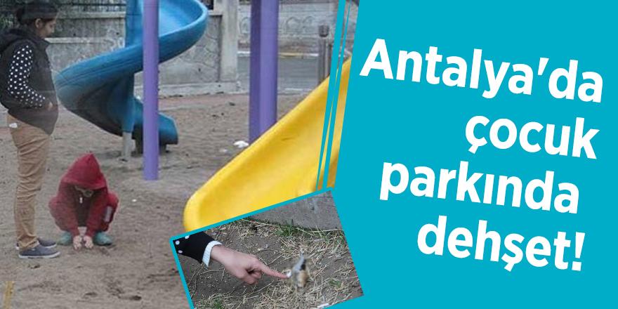 Antalya'da çocuk parkında dehşet!