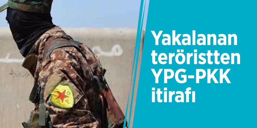Yakalanan teröristten YPG-PKK itirafı