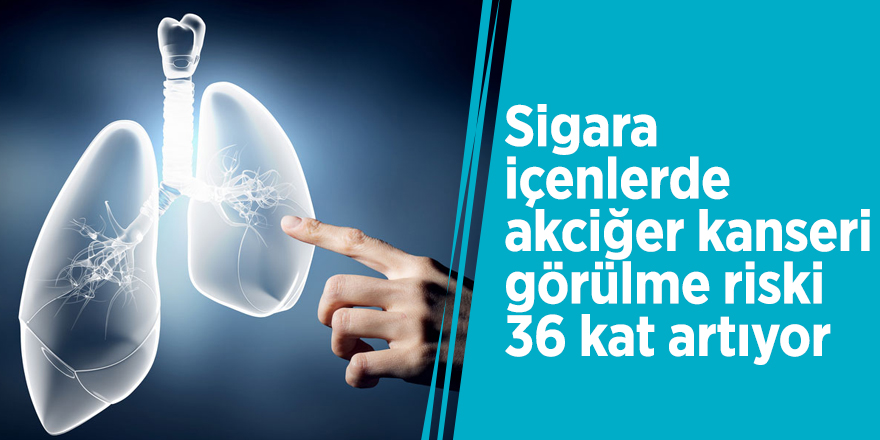 Sigara içenlerde akciğer kanseri görülme riski 36 kat artıyor