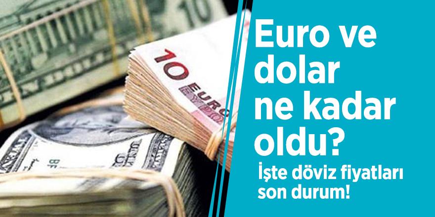 Euro ve dolar ne kadar oldu? İşte döviz fiyatları son durum!