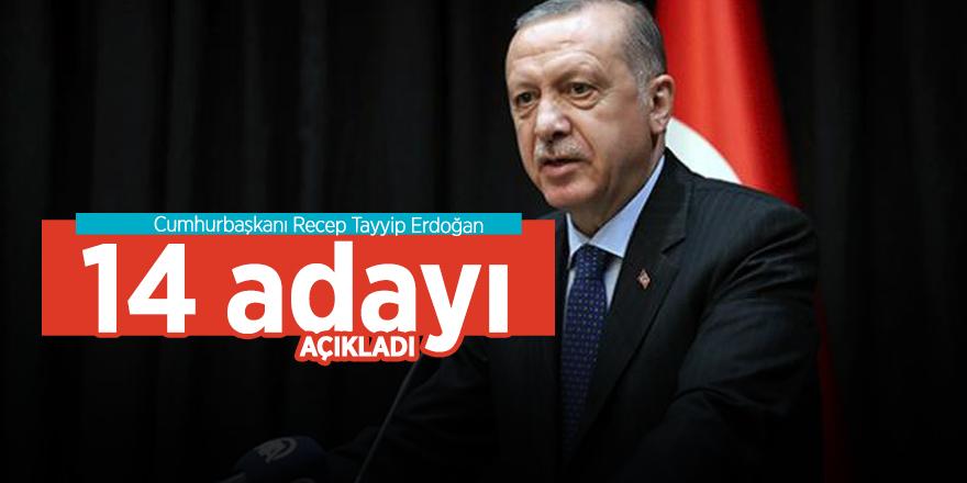 Başkan Erdoğan 14 adayı daha açıkladı