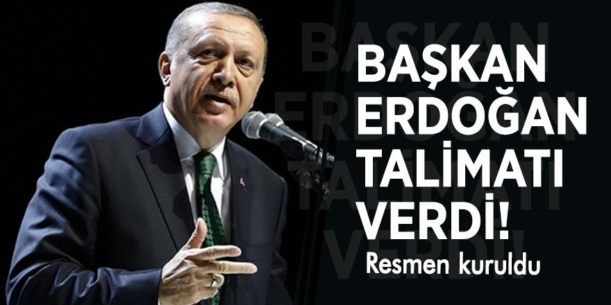 Başkan Erdoğan talimatı verdi! Resmen kuruldu