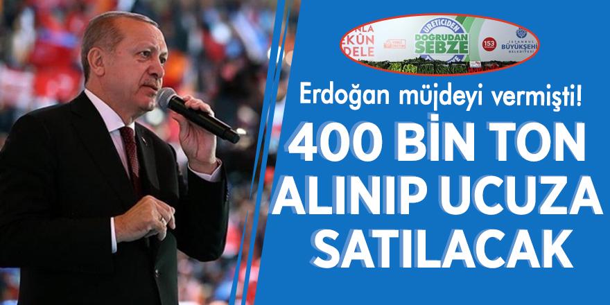 Erdoğan müjdeyi vermişti! 400 bin ton alınıp ucuza satılacak
