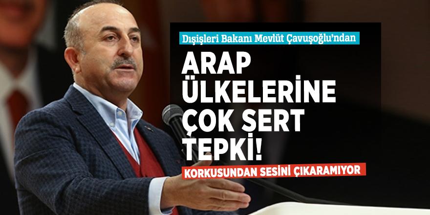 Türkiye'den Arap ülkelerine çok sert tepki!