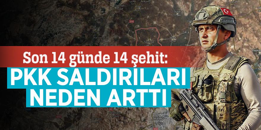 Son 14 günde 14 şehit: PKK saldırıları neden arttı