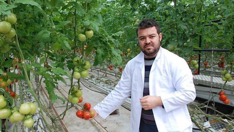 Sebzeler 'bilgisayar' ile üretiliyor