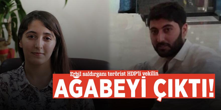 Erbil saldırganı terörist HDP'li vekilin ağabeyi çıktı!