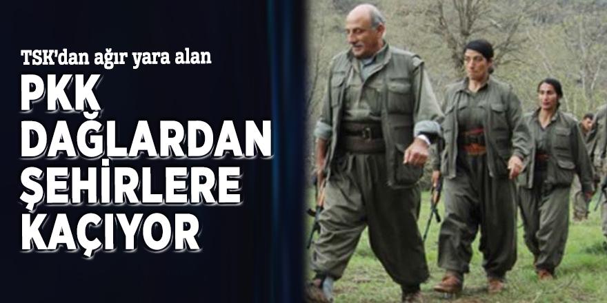 TSK'dan ağır yara alan PKK dağlardan şehirlere kaçıyor
