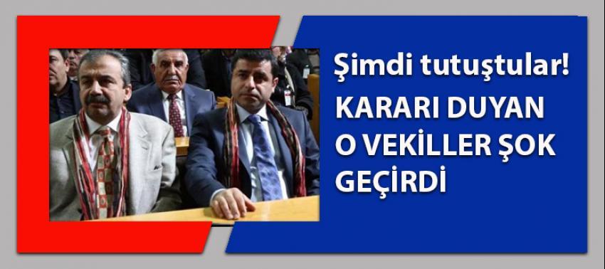 HDP vekilleri tutuştu: Kararı duyunca şok oldular