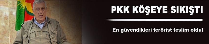 PKK'ın en güvendiği terörist teslim oldu!