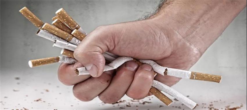 Sigarada 'tek tip' kuralı başlıyor