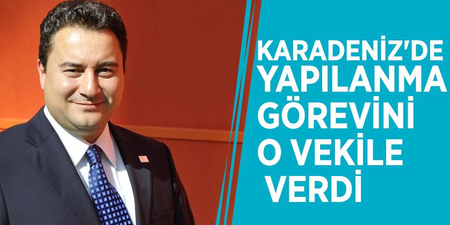 Ali Babacan Karadeniz'de yapılanma görevini o vekile verdi