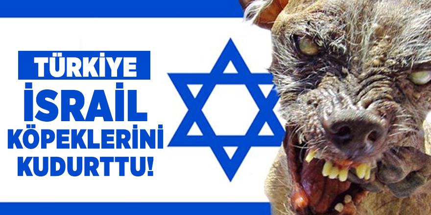 Türkiye İsrail köpeklerini kudurttu!