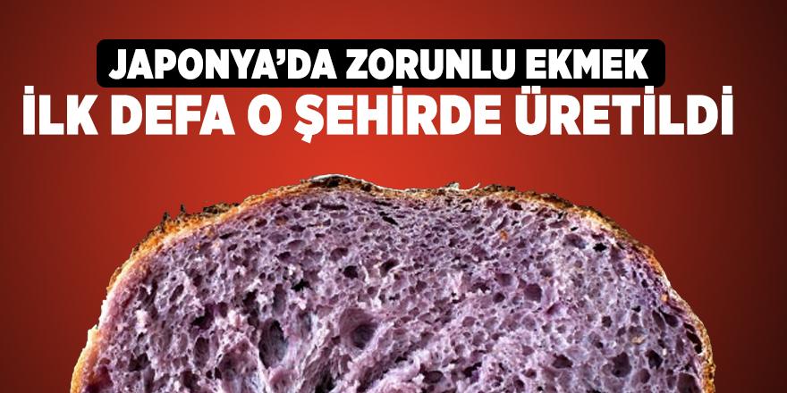 Mor ekmek, Türkiye'de de üretilmeye başlandı