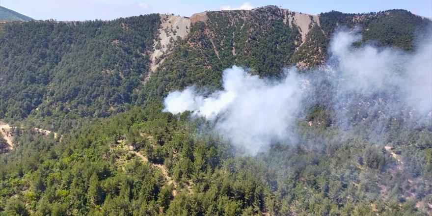 Hatay'da ormanda yangın çıktı! Ekipler seferber oldu