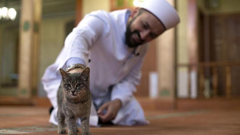 Hayvansever imam dünya basınına düştü