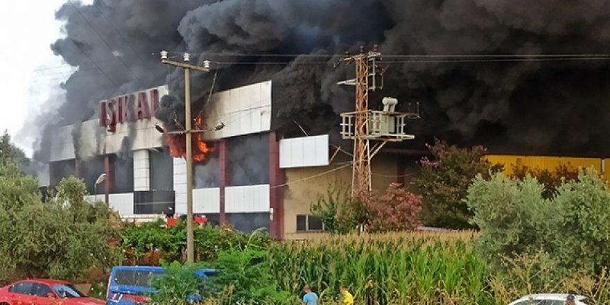 Manisa'da mobilya fabrikasında yangın çıktı
