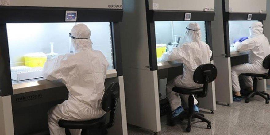 PCR testleri laboratuvar ruhsatlı tüm kuruluşlarda yapılabilecek