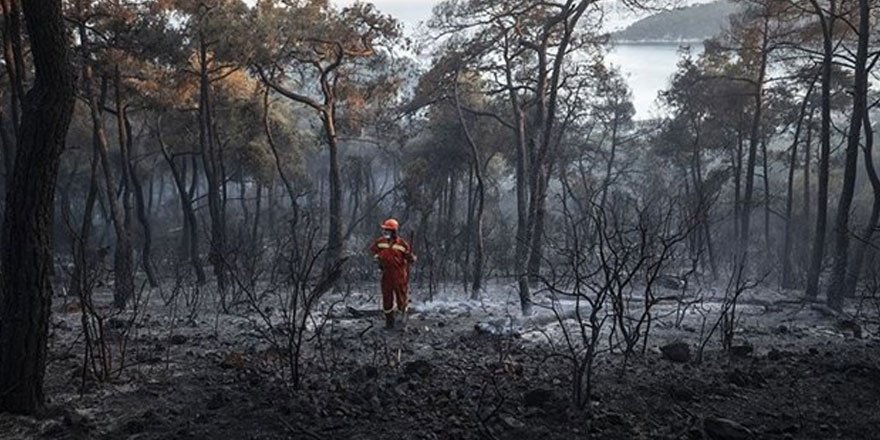Heybeliada'da orman yakan sanık için istenen ceza belli oldu