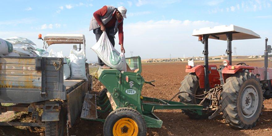 Çiftçilere verilen 2020 yılı gübre destekleri iki katına çıkarıldı