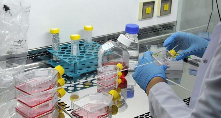 İlaçta molekül üretimine Türk imzası