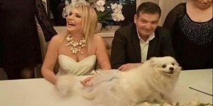 4 ay önce evlenen Seda Akgül'den kötü haber