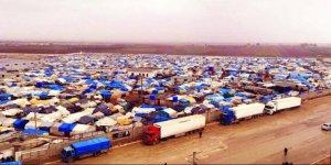 Sığınmacılar Türkiye'ye girmek istiyor!