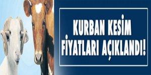 Türkiye Diyanet Vakfı kurban kesim fiyatlarını açıkladı