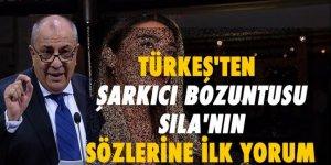 Tuğrul Türkeş'ten 'Sıla' yorumu