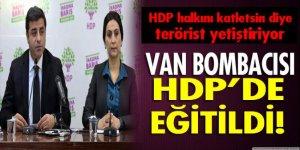 Van'ı kana bulayan hain HDP'de yetişmiş