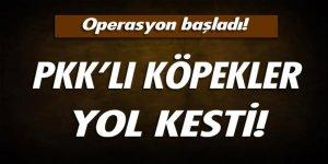 PKK'lı teröristler yol kesti! Operasyon başladı