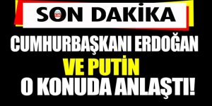 Erdoğan ve Putin Suriye konusunda anlaştı