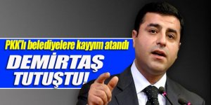 HDP'de kayyım paniği