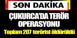 Çukurca'da terör operasyonları devam ediyor