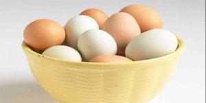 İşte yumurtanın faydaları...