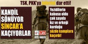 TSK, PKK'ya inlerini dar etti! Kandil sönüyor, Sincar'a kaçıyorlar