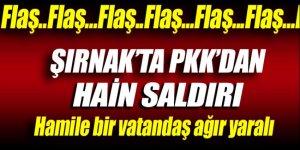 Şırnak'ta PKK'dan hain saldırı!