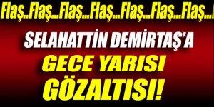 Selahattin Demirtaş'a gece yarısı gözaltısı!