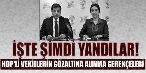 İşte şimdi yandılar! HDP'li vekillerin gözaltına alınma gerekçeleri