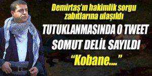 Demirtaş'ın hakimlik sorgu zabıtlarına ulaşıldı!