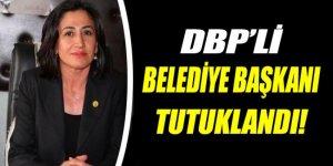Varto'nun DBP'li Belediye eş Başkan Ekinci tutuklandı