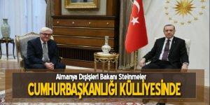 Cumhurbaşkanı Erdoğan, Steinmeier ile görüştü