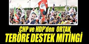 CHP ve HDP'den ortak 'teröre destek' mitingi