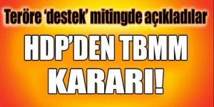 HDP'den flaş karar! Mitingde açıkladılar