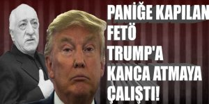 Paniğe kapılan FETÖ, Trump'a kanca atmaya çalıştı