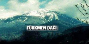 Rejim güçleri, Türkmendağı'ndan geri çekildi